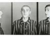 Auschwitz photo of Tadeusz